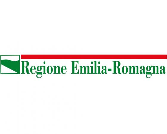Realizzazione del sistema informativo apprendistato della Regione Emilia-Romagna (SIAPER)